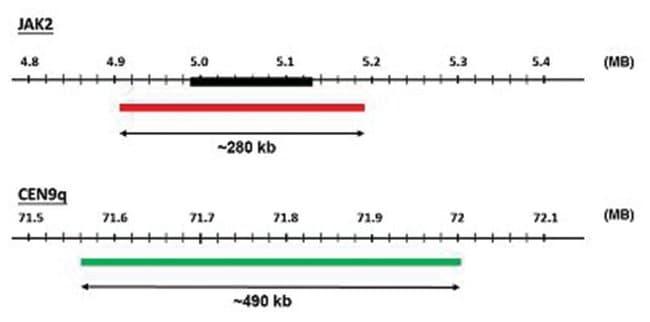 Abnova JAK2/CEN9q (Texas Red/FITC) FISH Probe JAK2/CEN9q FISH Probe:Life