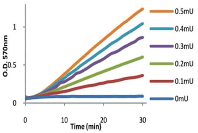 Abnova Asparaginase Activity Assay Kit  1 Kit:Life Sciences