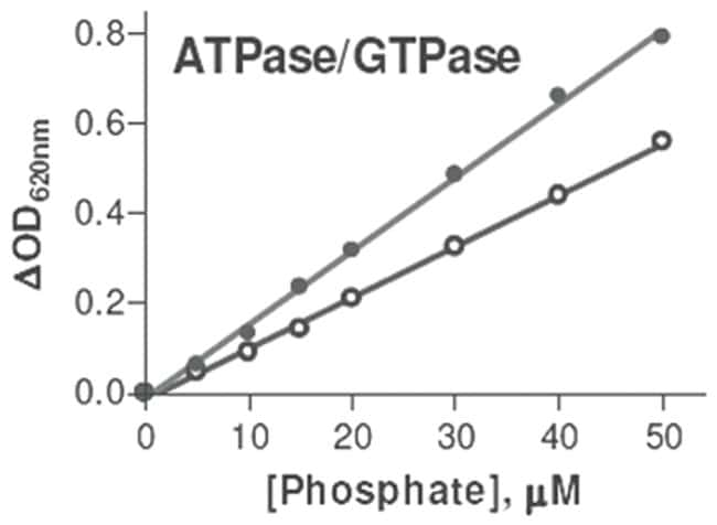 Abnova ATPase/GTPase Assay Kit 1 Kit:Life Sciences