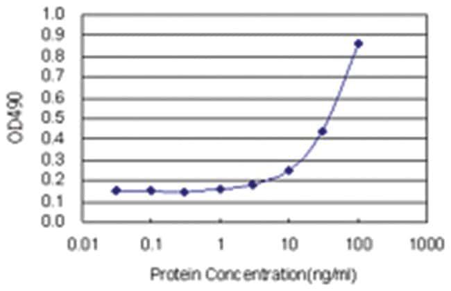 anti-CTH Ab-1 Matched Antibody Pair, Abnova 1 Set, Unlabeled:Life Sciences