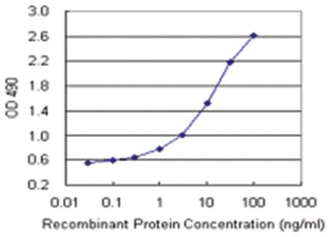 anti-MDM4 Matched Antibody Pair, Abnova 1 set, Unlabeled:Life Sciences