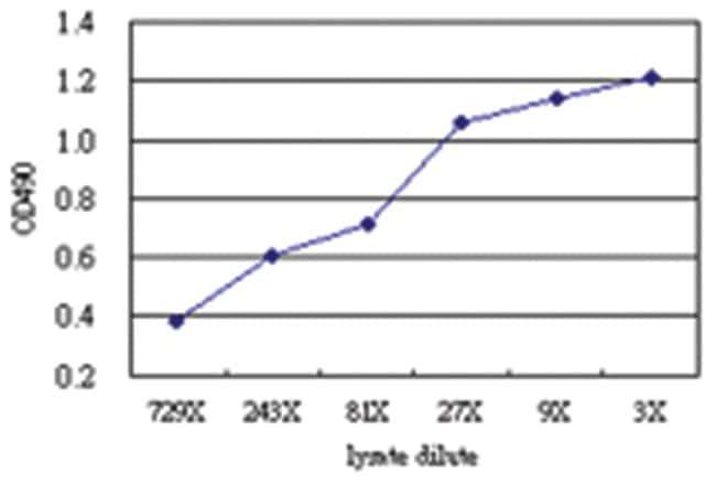 anti-SNX4 Matched Antibody Pair, Abnova 1 Set, Unlabeled:Life Sciences