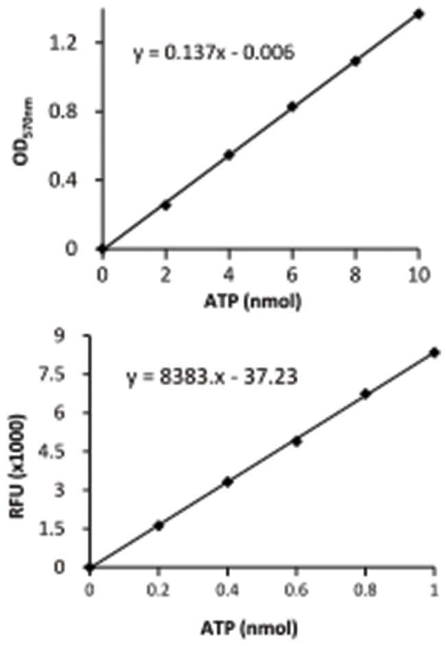 Abnova ATP Assay Kit (Colorimetric/Fluorometric) 1 Kit:Life Sciences