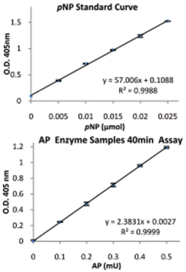 Abnova Acid Phosphatase Assay Kit (Colorimetric) 1 Kit:Life Sciences