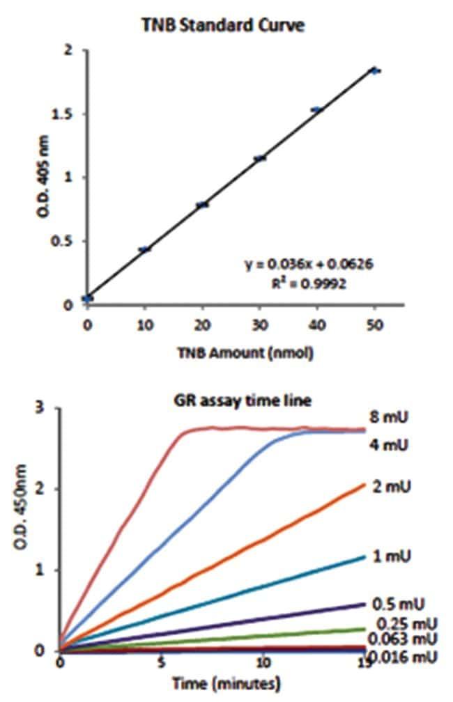 Abnova Glutathione Reductase Assay Kit 1 Kit:Life Sciences