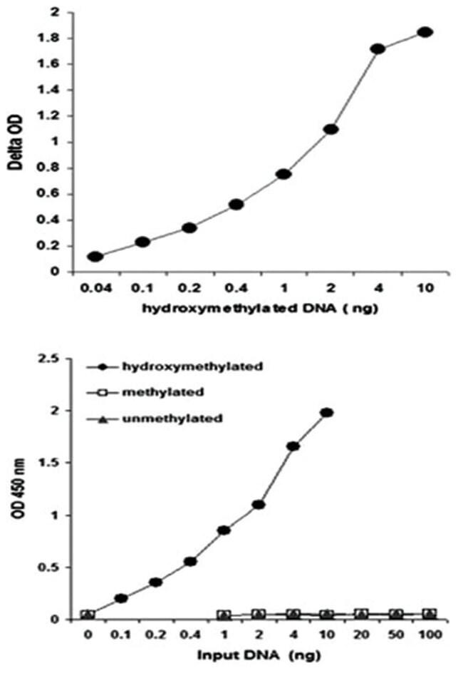 Abnova Hydroxymethylated DNA Quantification Kit (Colorimetric) 1 Kit:Life