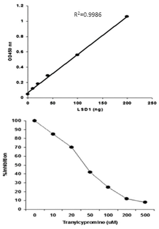 Abnova LSD1 Demethylase Activity/Inhibition Assay Kit (Colorimetric) 1
