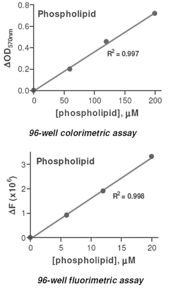 Abnova Phospholipid Assay Kit 1 Kit:Life Sciences
