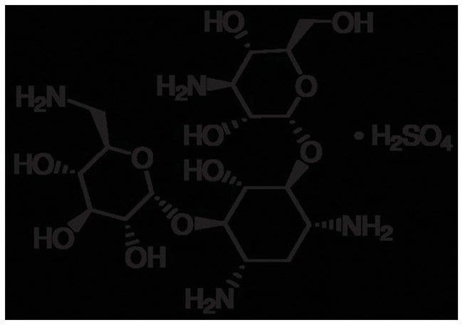 MP Biomedicals™Kanamycin Sulfate