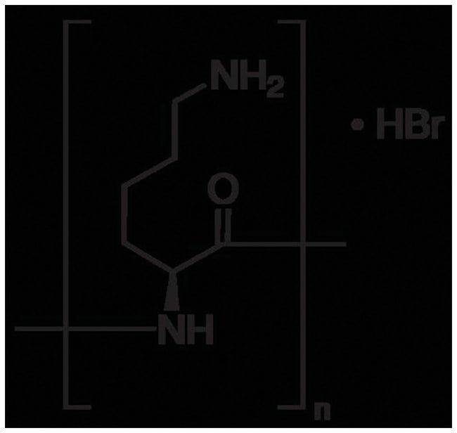 MP Biomedicals™Poly-L-Lysine Hydrobromide Attachment Factors: ≥70,000 MW