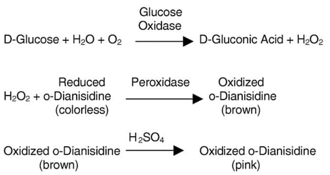 MP Biomedicals™ Glucose Oxidase