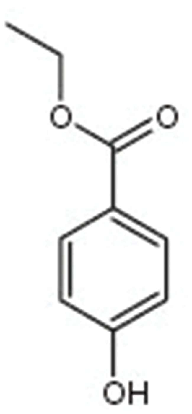 MP Biomedicals Catalase:Life Sciences:Enzymes and Inhibitors