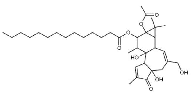 MP Biomedicals Phorbol-12-Myristate-13-Acetate, MP Biomedicals:Life Sciences:Enzymes