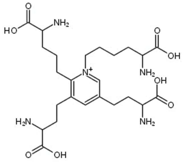 Isodesmosine, ≥99%, MP Biomedicals™ 1mg Ver productos