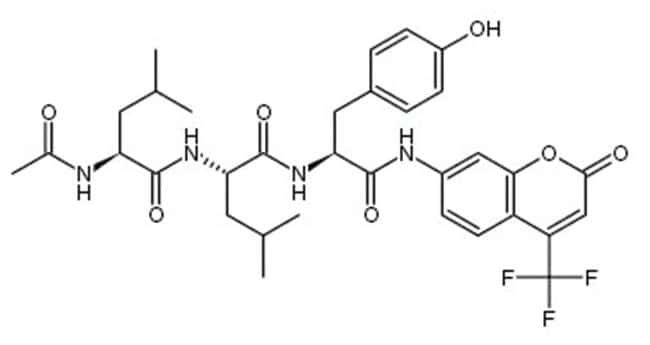 MP Biomedicals Ac-LEU-LEU-TYR-7-Amino-4-Trifluoromethylcoumarin 10mg:Electrophoresis,