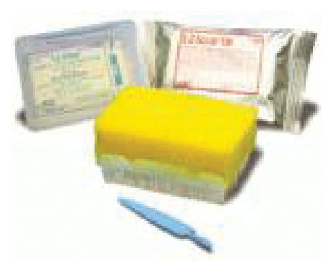 BD E-Z Scrub Surgical Scrub Brush Green; Sterile; Detergent Free:Gloves,