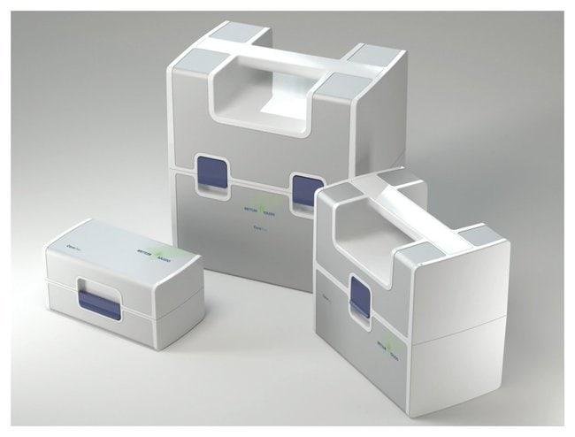 Mettler Toledo™CarePac™ Small Weights with Certificate