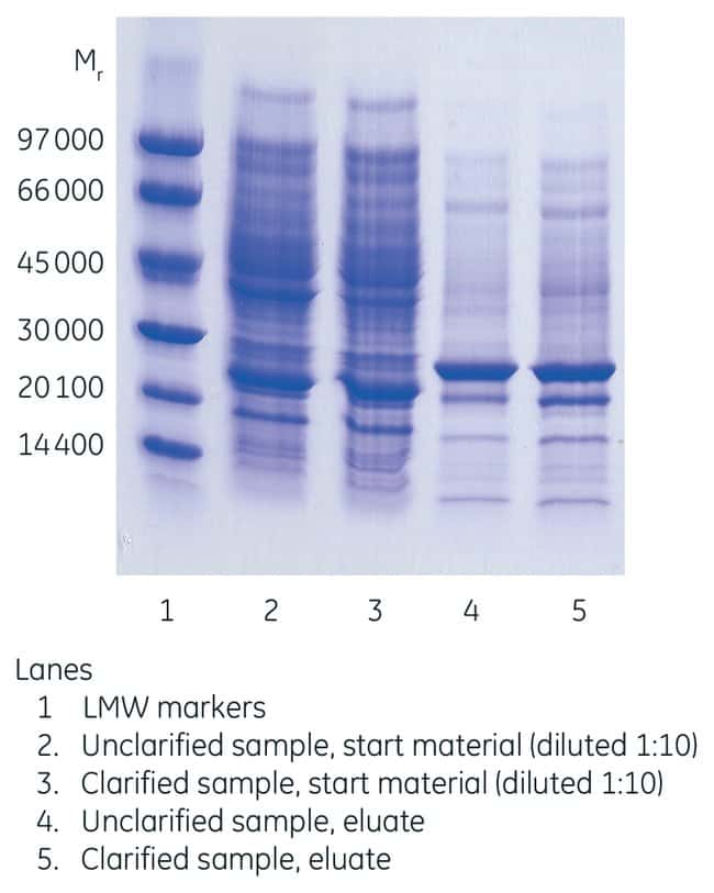Cytiva (Formerly GE Healthcare Life Sciences) His SpinTrap Spin Columns