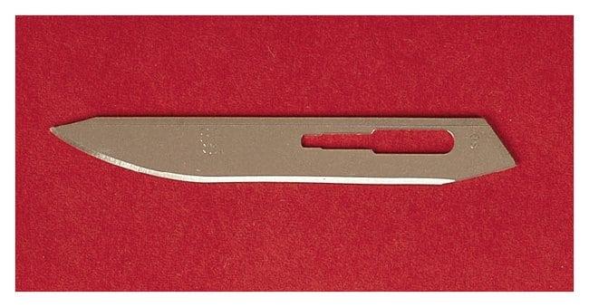 Aspen Surgical™Bard-Parker™ Carbon Steel Blade with Rib-Back™ Design
