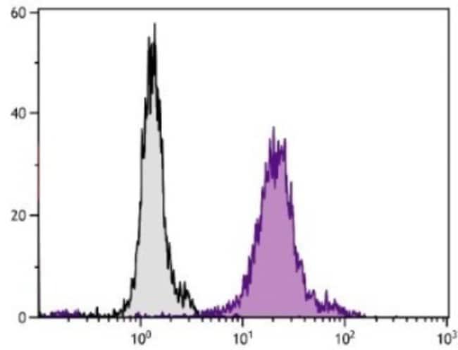 anti-Aminopeptidase N/CD13, FITC, Clone: 22A5, Novus Biologicals 1mL; FITC:Life