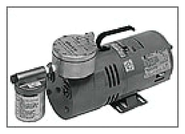 Thermo Scientific RAP Regulated Air Pumps  Regulated air pump for model
