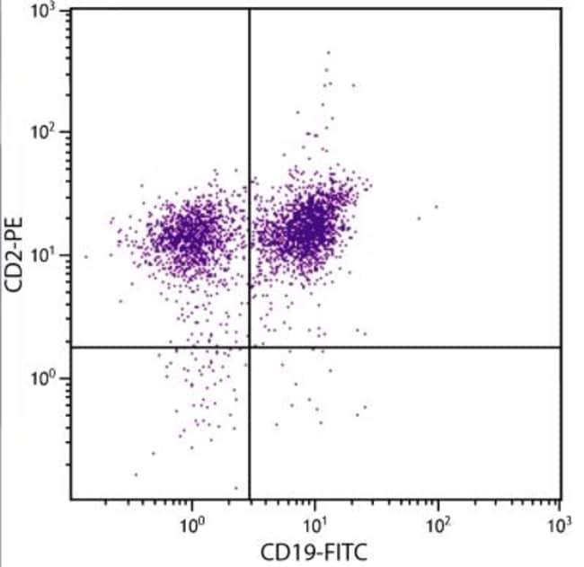 anti-CD2, PE, Clone: 12-15, Novus Biologicals 0.2mg; PE:Antibodies
