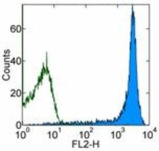 anti-CD45RB, Clone: C363.16A, Novus Biologicals 0.25mg; Unlabeled:Life