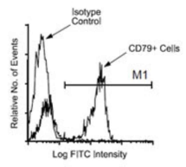 anti-CD79B, Clone: HM79-12, Novus Biologicals 0.5mg; Unlabeled:Life Sciences