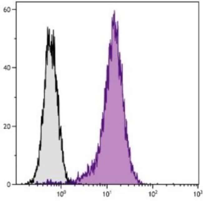 anti-CD81, FITC, Clone: 2F7, Novus Biologicals 0.25mg; FITC:Life Sciences