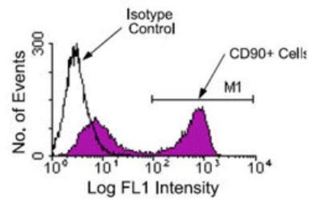 anti-CD90/Thy1, FITC, Clone: G7, Novus Biologicals 0.25mg; FITC:Life Sciences