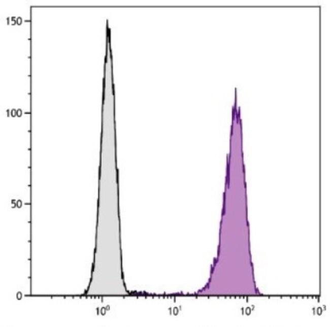 anti-Fc gamma RIIIA/CD16a, PE, Clone: GRM1, Novus Biologicals 1mL; PE:Life