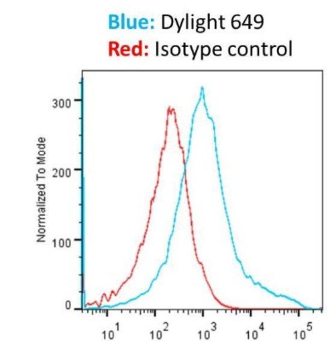 Goat anti-Mouse IgG, Fc Antibody, DyLight 649, Polyclonal, Novus Biologicals