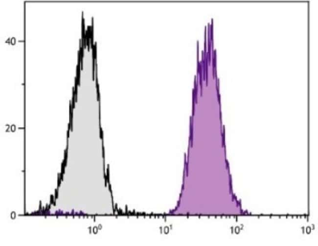 anti-H-2Dd, FITC, Clone: 34-5-8S, Novus Biologicals 0.25mg; FITC:Life Sciences