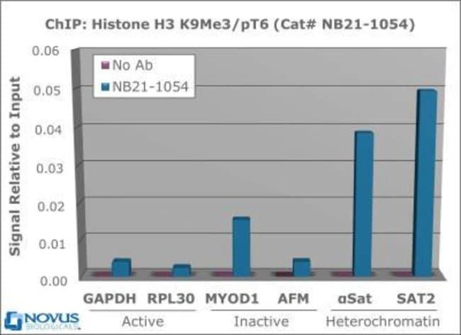 anti-Histone H3 (p Thr6, Trimethyl Lys9), Polyclonal, Novus Biologicals:Antibodies:Primary