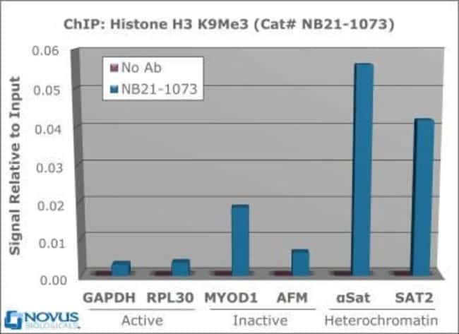 anti-Histone H3 (Trimethyl Lys9), Polyclonal, Novus Biologicals:Antibodies:Primary