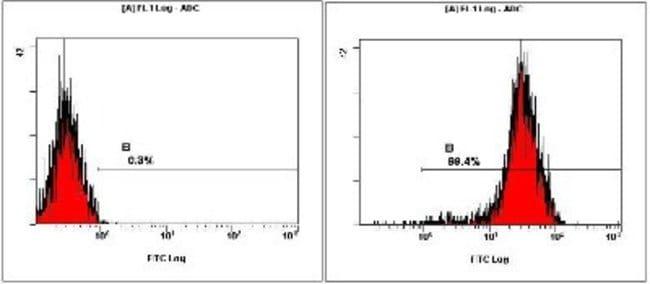 Novus Biologicals Human ESC Marker Antibody Pack 6 vials:Life Sciences