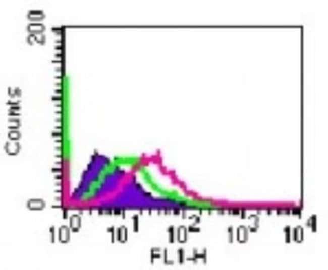 anti-IL-20 R alpha, Polyclonal, Novus Biologicals:Antibodies:Primary Antibodies