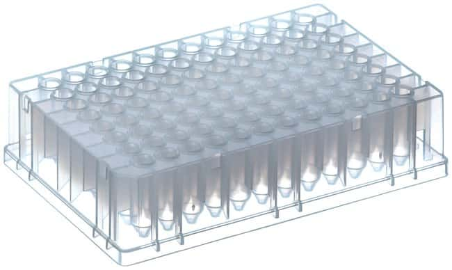 Thermo Scientific™ Abgene™ 96 Well 0.8mL Polypropylene Deepwell Storage Plate: Microplates Dishes, Plates and Flasks