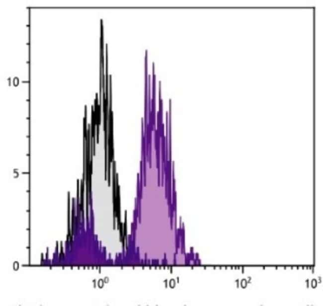 anti-MHC Class I, Clone: F21-2, Novus Biologicals 0.5mg; Unlabeled:Antibodies