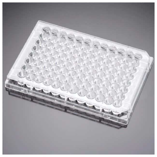 Corning™ Placa de multipocillos de gelatina BioCoat™ 6-well; 5/pk., 50/cs. Ver productos