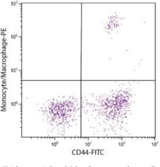 anti-Monocyte/Macrophage, FITC, Clone: KUL01, Novus Biologicals 0.25mg;