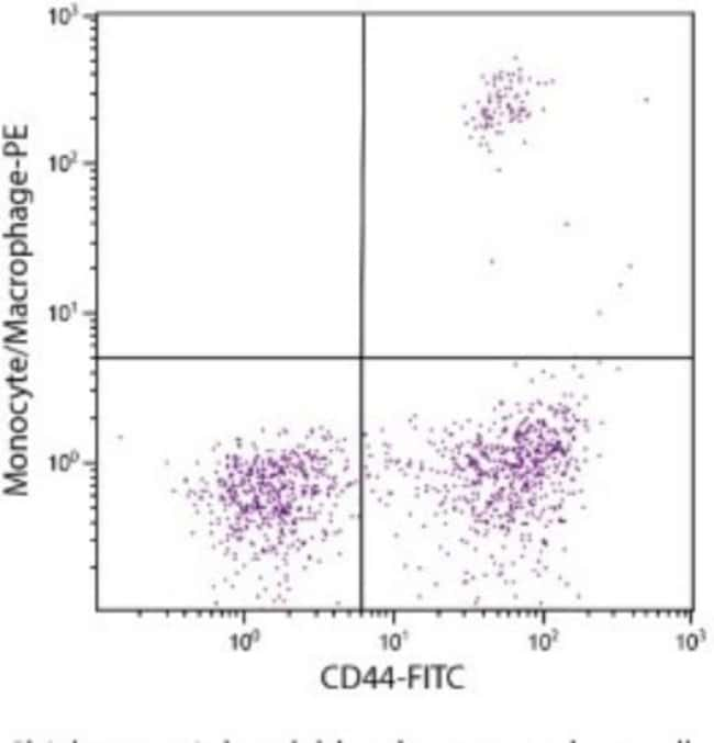 anti-Monocyte/Macrophage, Clone: KUL01, Novus Biologicals 0.5mg; Unlabeled:Antibodies