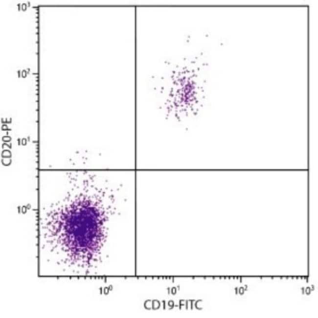 anti-MS4A1/CD20, FITC, Clone: B-Ly1, Novus Biologicals 1mL; FITC:Life Sciences