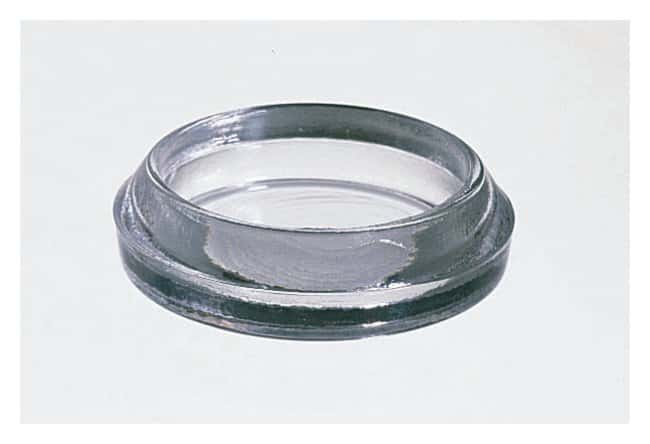 Variety GlassBeveled-Edge Watch Glass Watch Glass Syracuse; 12/Pk.:Dishes