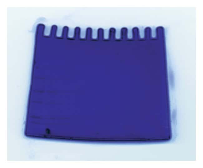 Thermo Scientific GelCode Blue Stain Reagent :Electrophoresis, Western