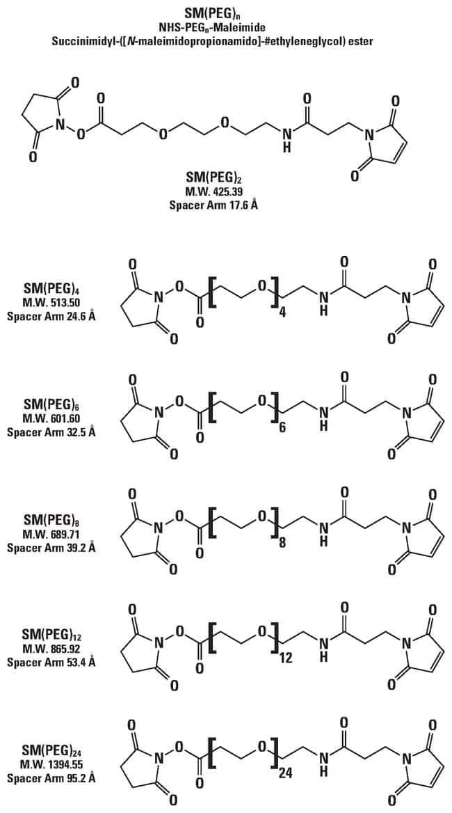 Thermo Scientific SM(PEG)12 (PEGylated, long-chain SMCC crosslinker):BioPharmaceutical