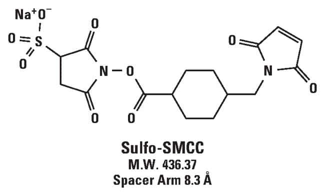 Thermo Scientific™ Sulfo-SMCC (sulfosuccinimidyl 4-(N-maleimidomethyl)cyclohexane-1-carboxylate), No-Weigh™ Format: Crosslinking Reagents Crosslinking, Labelling and Protein Modification