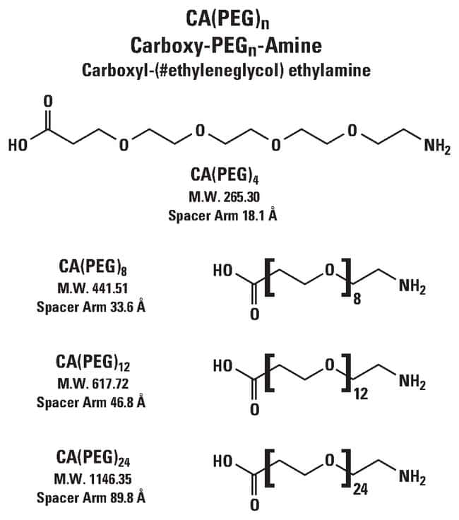Thermo Scientific CA(PEG)4 Carboxy-PEG-Amine Compound:Life Sciences:Protein