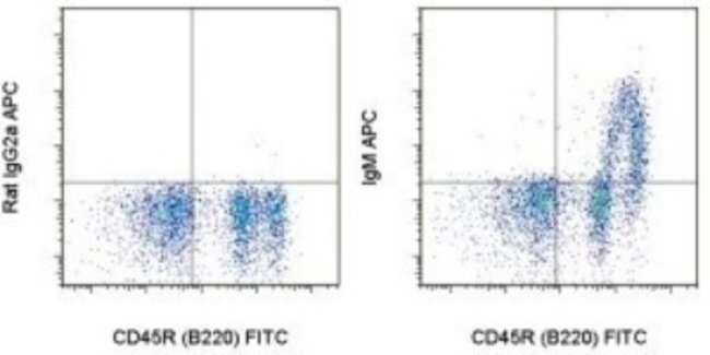 anti-IgM, APC, Clone: II/41, Novus Biologicals 0.1mg; APC:Life Sciences