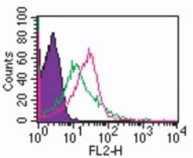 anti-TLR1, Polyclonal, Novus Biologicals:Antibodies:Primary Antibodies